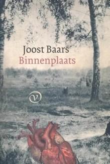 Omslag Binnenplaats - Joost Baars
