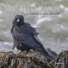 Omslag Staren naar water - Lodewijk Ouwens