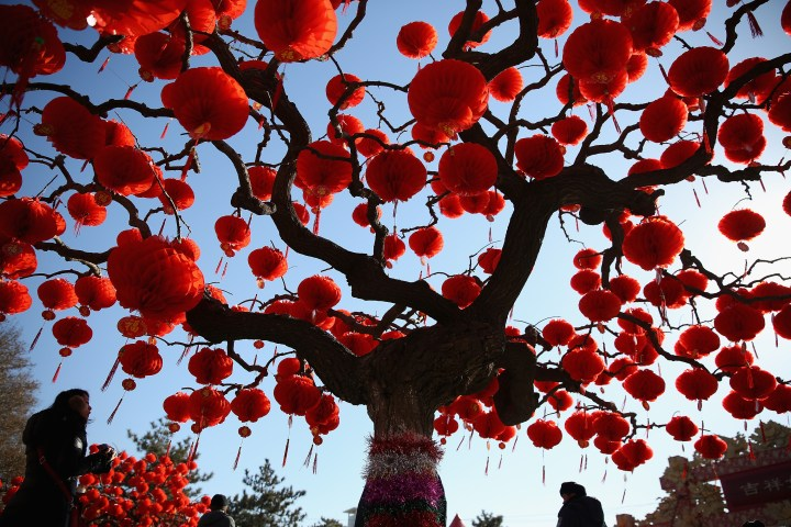 BEIJING, CHINA - JANUARY 30: A Visitor passes the trees decorated with red lanterns at the Spring Festival Temple Fair for celebrating Chinese Lunar New Year of Horse at the Temple of Earth park on January 30, 2014 in Beijing, China. The Chinese Lunar New Year of Horse also known as the Spring Festival, which is based on the Lunisolar Chinese calendar, is celebrated from the first day of the first month of the lunar year and ends with Lantern Festival on the Fifteenth day. (Photo by Feng Li/Getty Images)