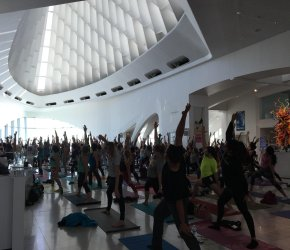 Yoga @ the Museum
