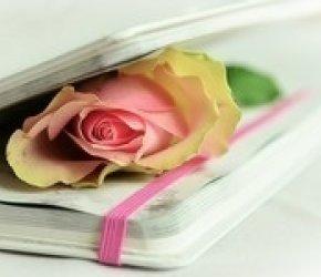 Rose's Book Club