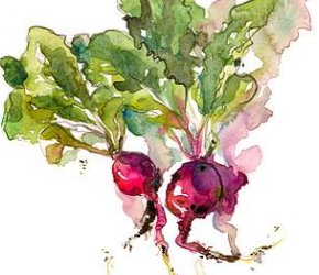 Whimsical Watercolour Veggies with Crystal Beshara