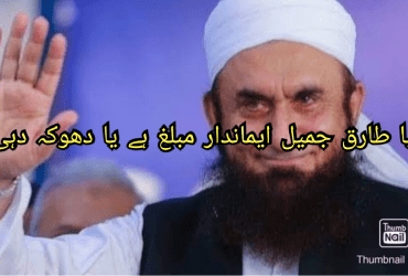 Featued Image of the Palm Reading of Tariq Jamil.