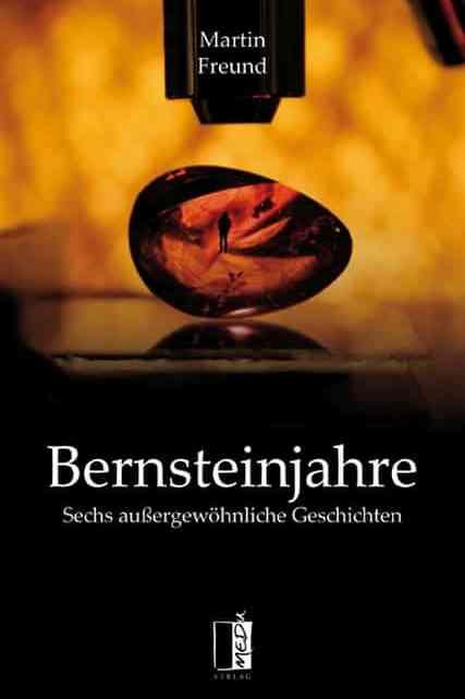 Bernsteinjahre – Martin Freund