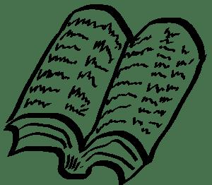 cuantos capitulos tiene una novela