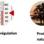 Label-protege-matelas-dahlia