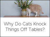 knock off tables