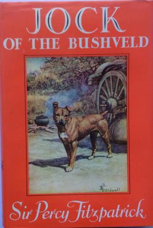 jock-of-the-bushveld-md18769457471