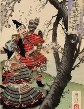 Yoshitoshi Tsukioka - Cerisier 1885