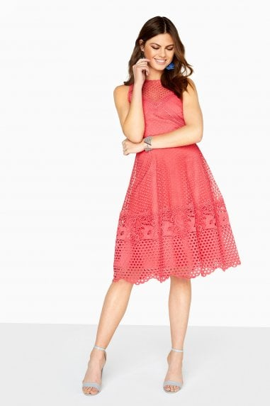 Daisy Guipure Lace Skater Dress