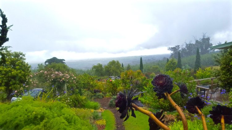 Beautiful view from Alii Kula Lavender Farm in Maui Hawaii