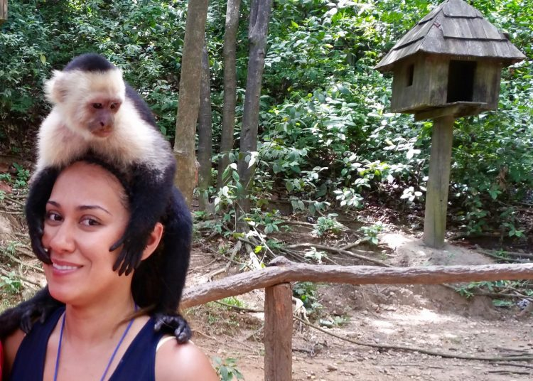 If you want to take pictures with Monkeys on your head, Gumbalimba Park in Roatan is the place to go lol!