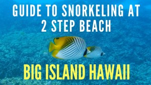 GUIDE TO SNORKELING AT 2 STEP BEACH BIG ISLAND HAWAII