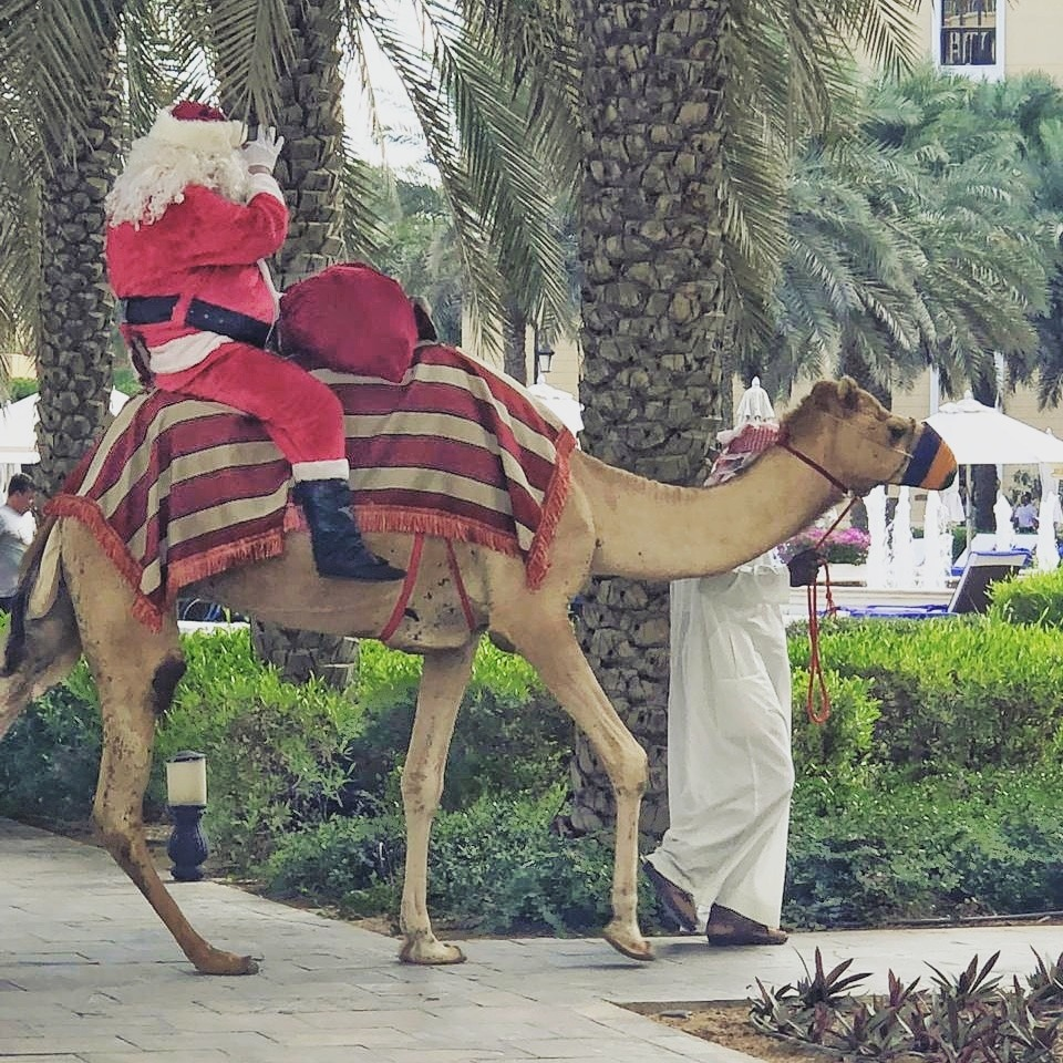 Santa arriving to lunch on a camel