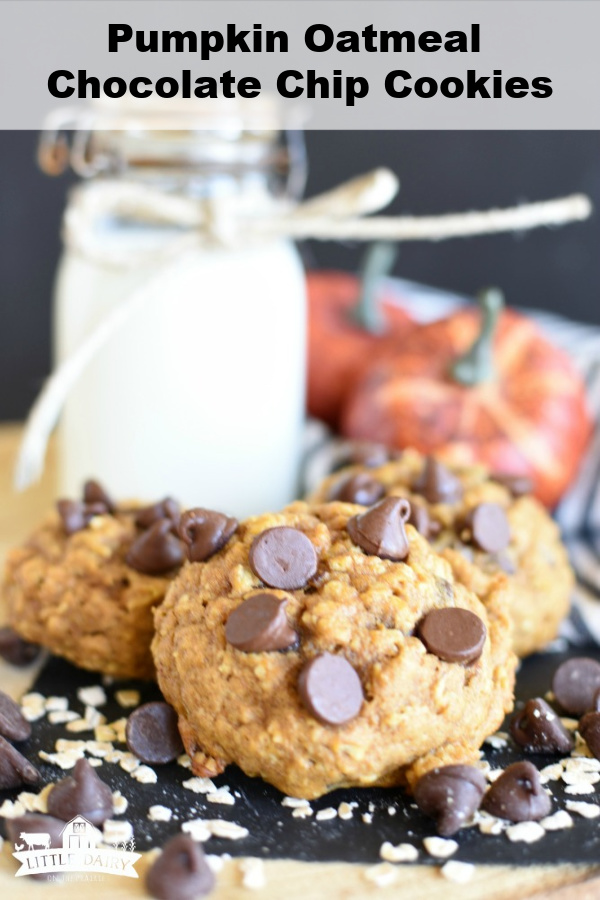 pumpkin cookies topped with chocolate chips sitting on a cooling rack