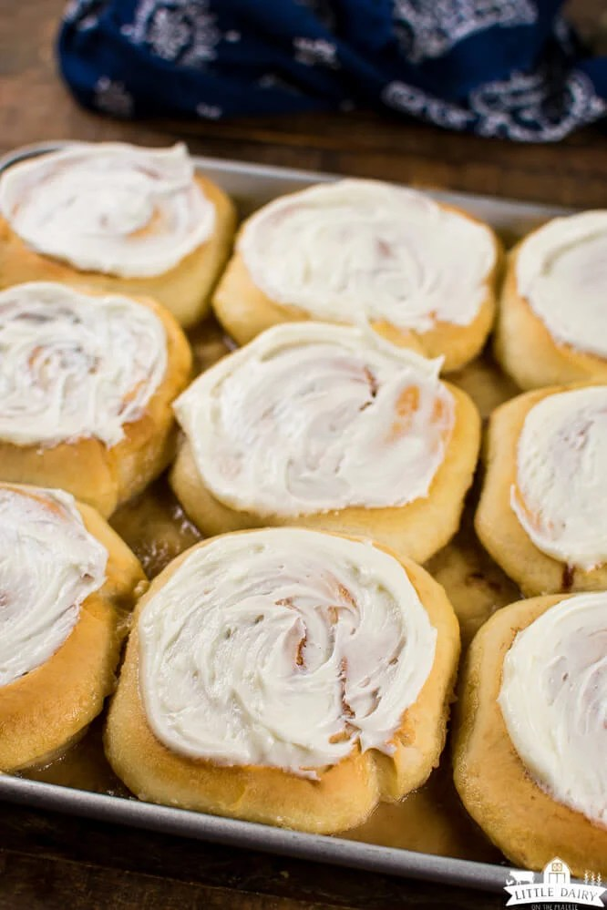 a pan with cinnamon rolls with cream cheese icing