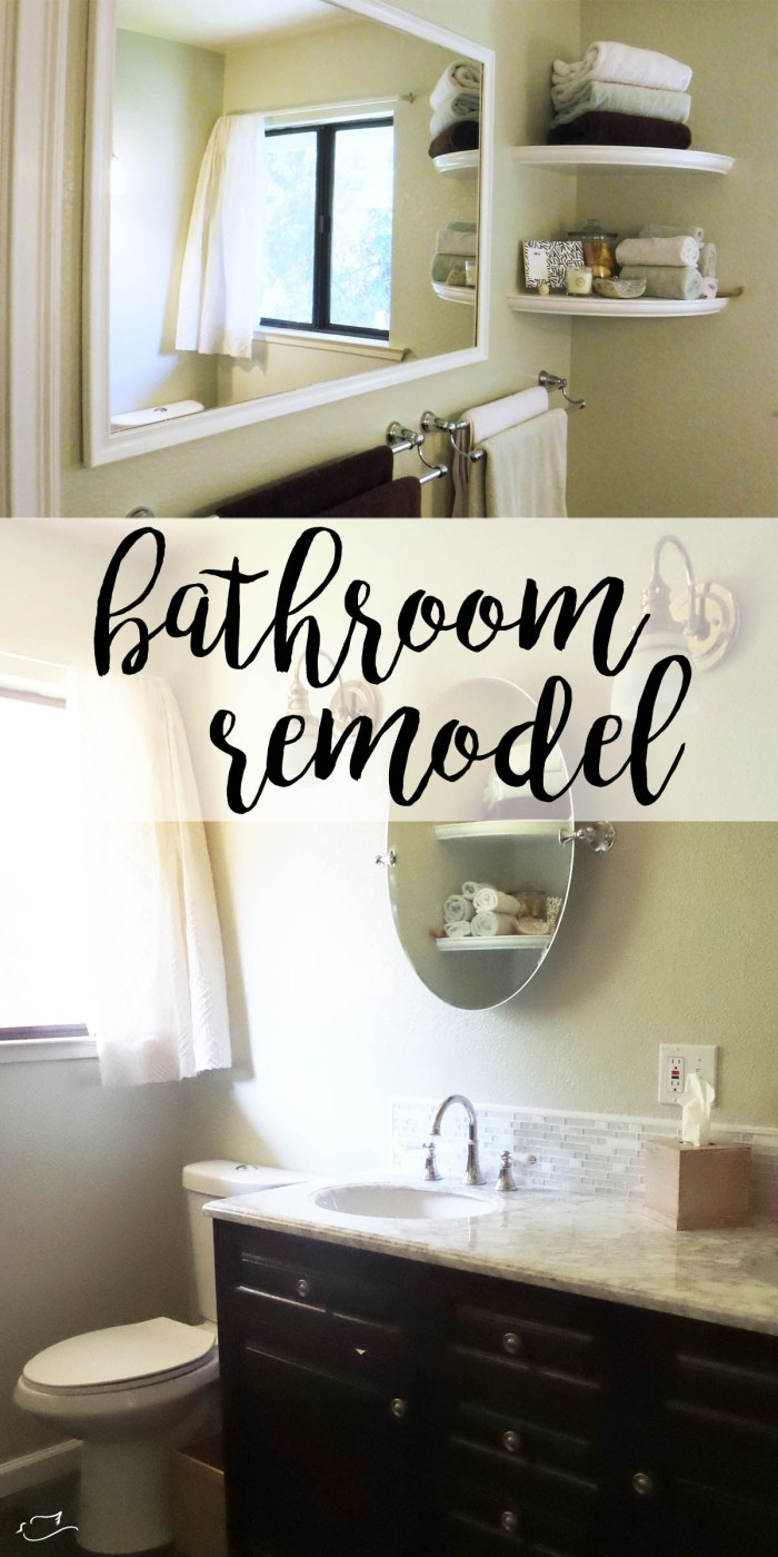 Remodel Bathroom Blog master bathroom remodel | little dove blog