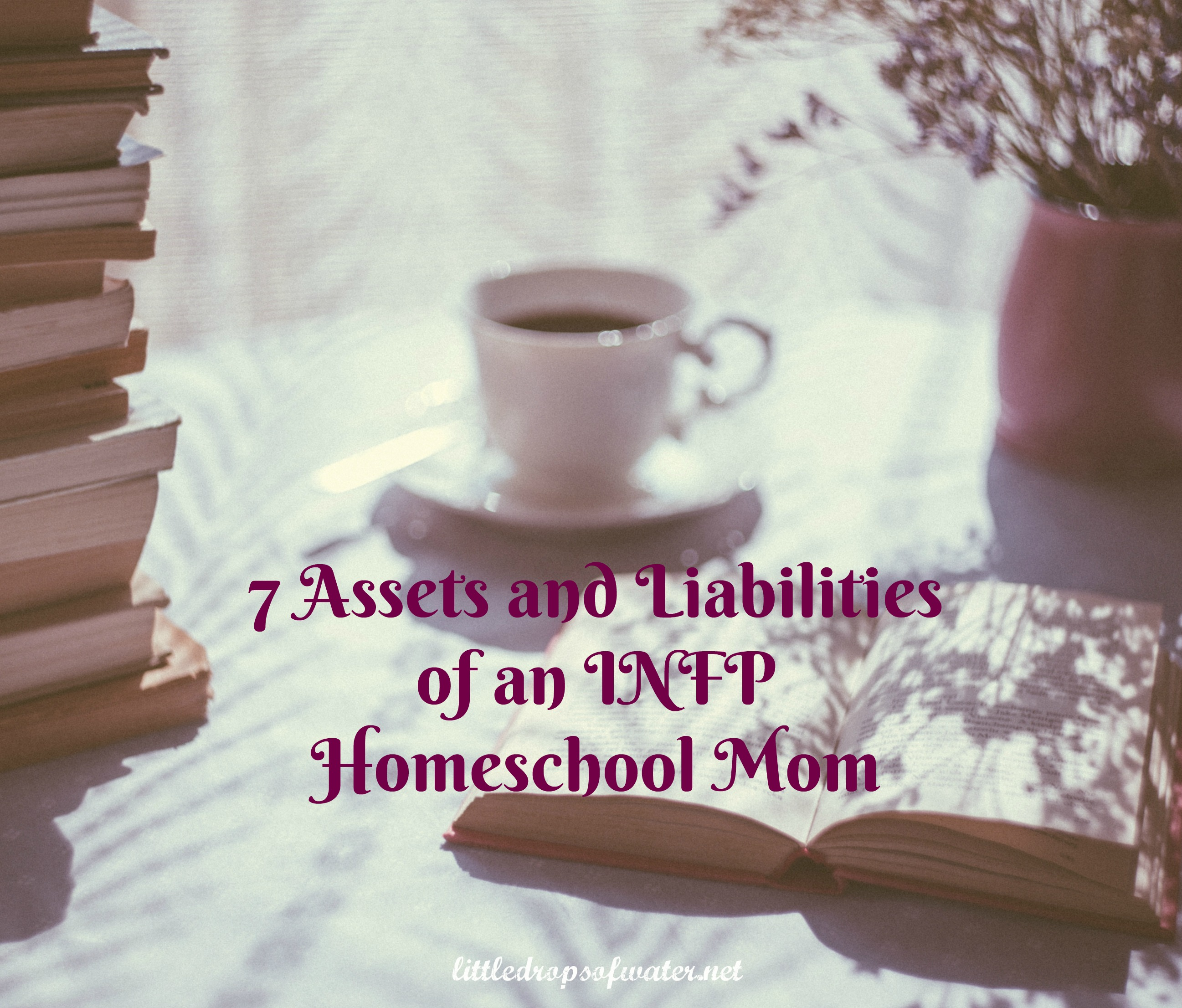7 Assets and Liabilities of an INFP Homeschool Mom – Little