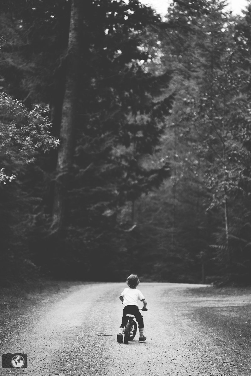 Little boy riding his bike into the woods