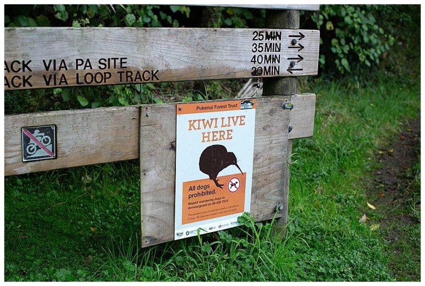 Kiwi Live Here sign at Coronation Scenic Reserve