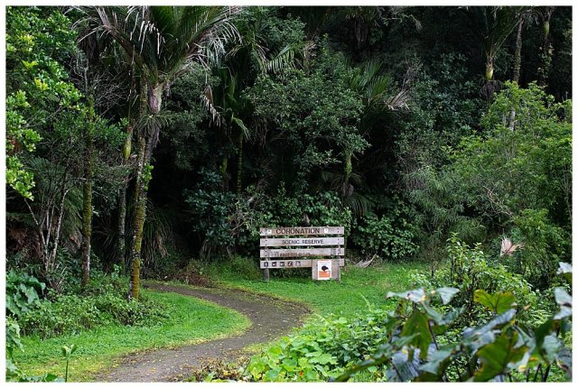 Coronation Scenic Reserve