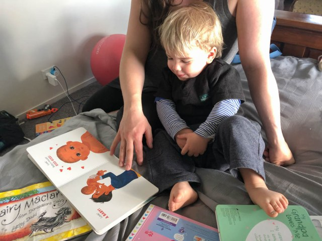 Look! Babies Head to Toe Review 3