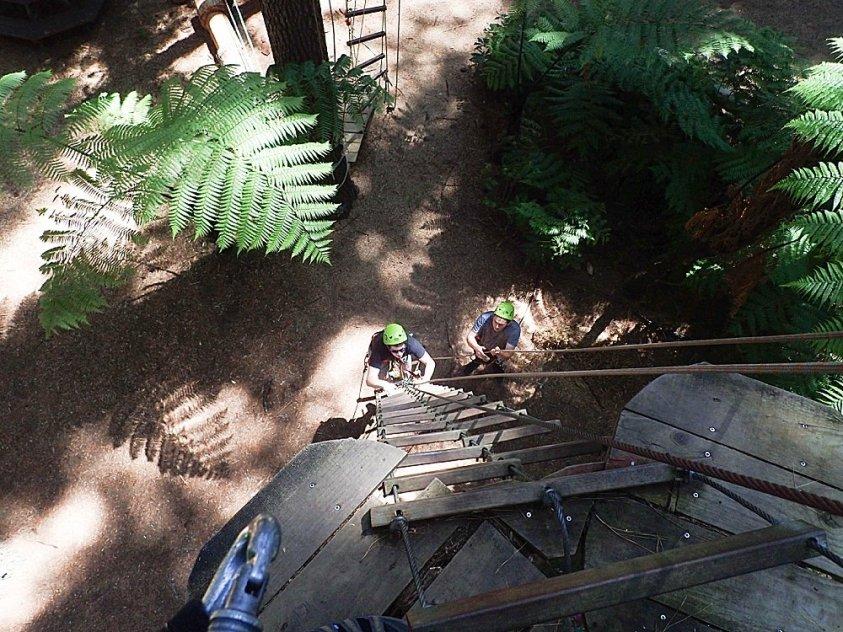 Adventure Forest Whangarei New Zelaand.
