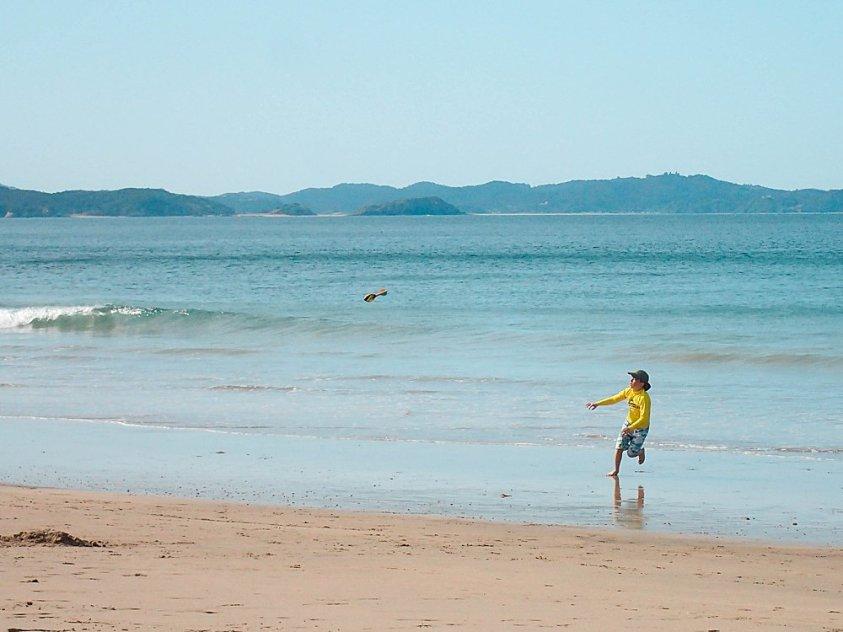 Apollo on the beach in New Zealand.