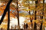 日光中禪寺湖_Lake Chuzenji in Nikko