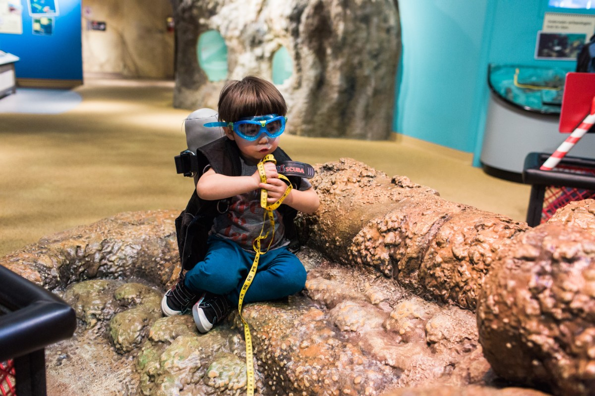 the-childrens-museum-of-indianapolis-treasures-of-the-earth-38