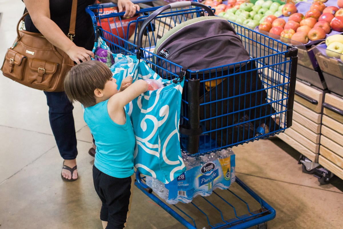 cart-mama-review-grocery-shopping-5