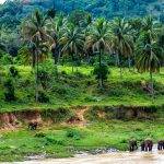 10 conseils pour voyager écolo