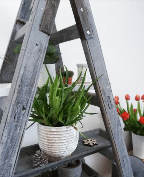 littlegreenbee-soisbioetbastoi (5)