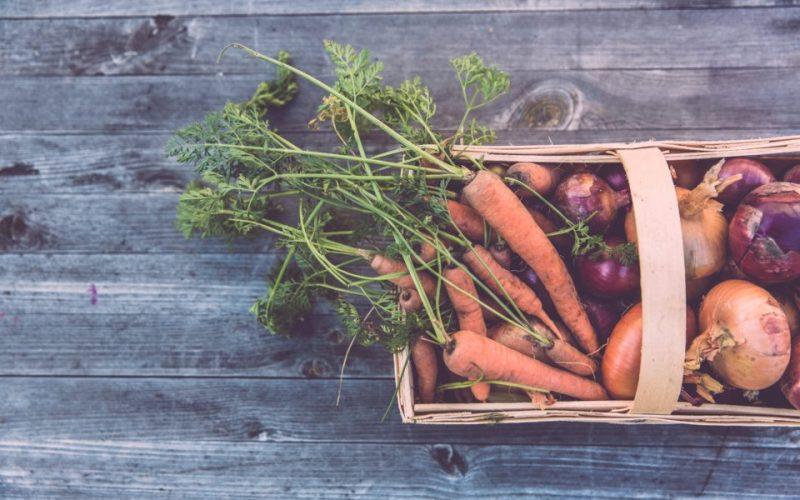 C'est la nouvelle application écolo du moment : Too Good To Go veut contrer le gaspillage alimentaire.