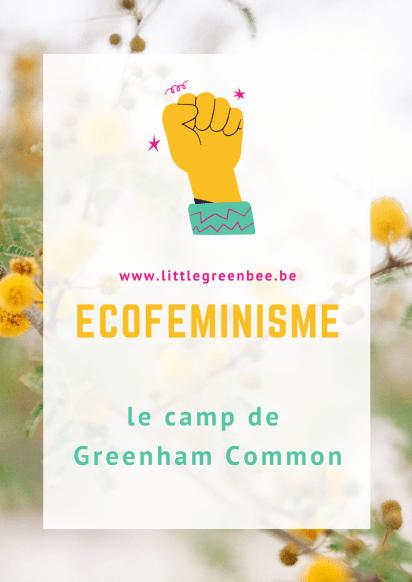 C'est en 1981 que s'ouvre le Greenham Common Women's Peace Camp dans le Berkshire, un comté d'Angleterre. Tout commence avec 36 femmes qui entament une marche depuis Cardiff jusque GreenHam pour manifester suite à la décision de l'OTAN d'autoriser le stockage de missiles dans des bases militaires.