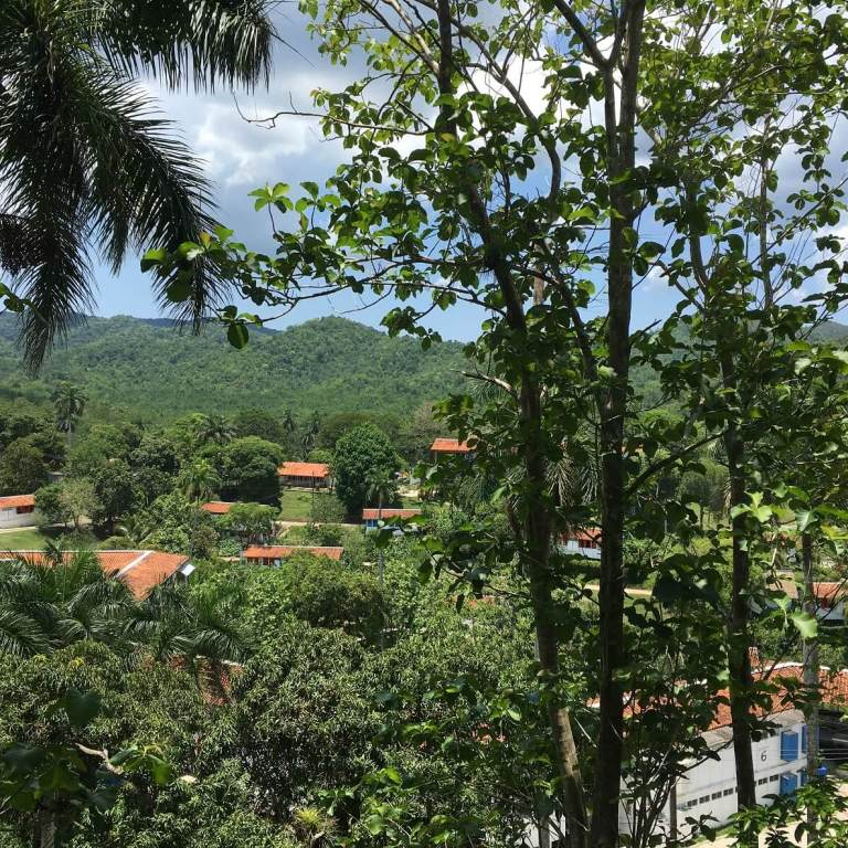 Looking at Las Terrazas, Cuba, through the trees