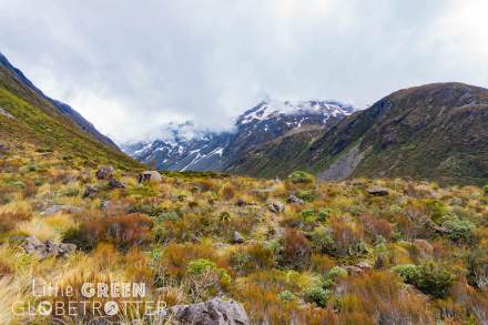Otira-Valley-Arthurs-Pass-Canterbury-New-Zealand
