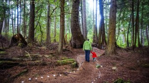 A father hiking with children through the forest