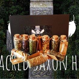9 sacred saxon herbs