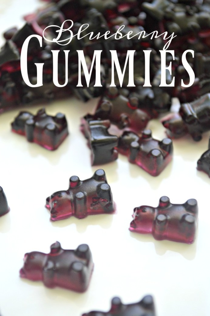 How to Make Blueberry Gummies by Little House Living