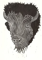 Bison - Relief Print