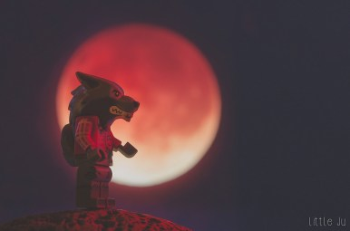 Direwolf of the blood moon