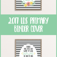 2017 Primary Binder Covers