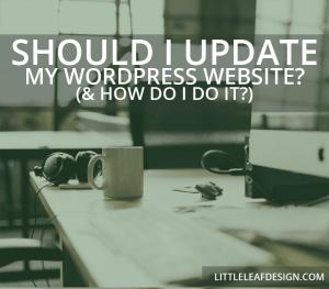 Should I Update My WordPress Site?