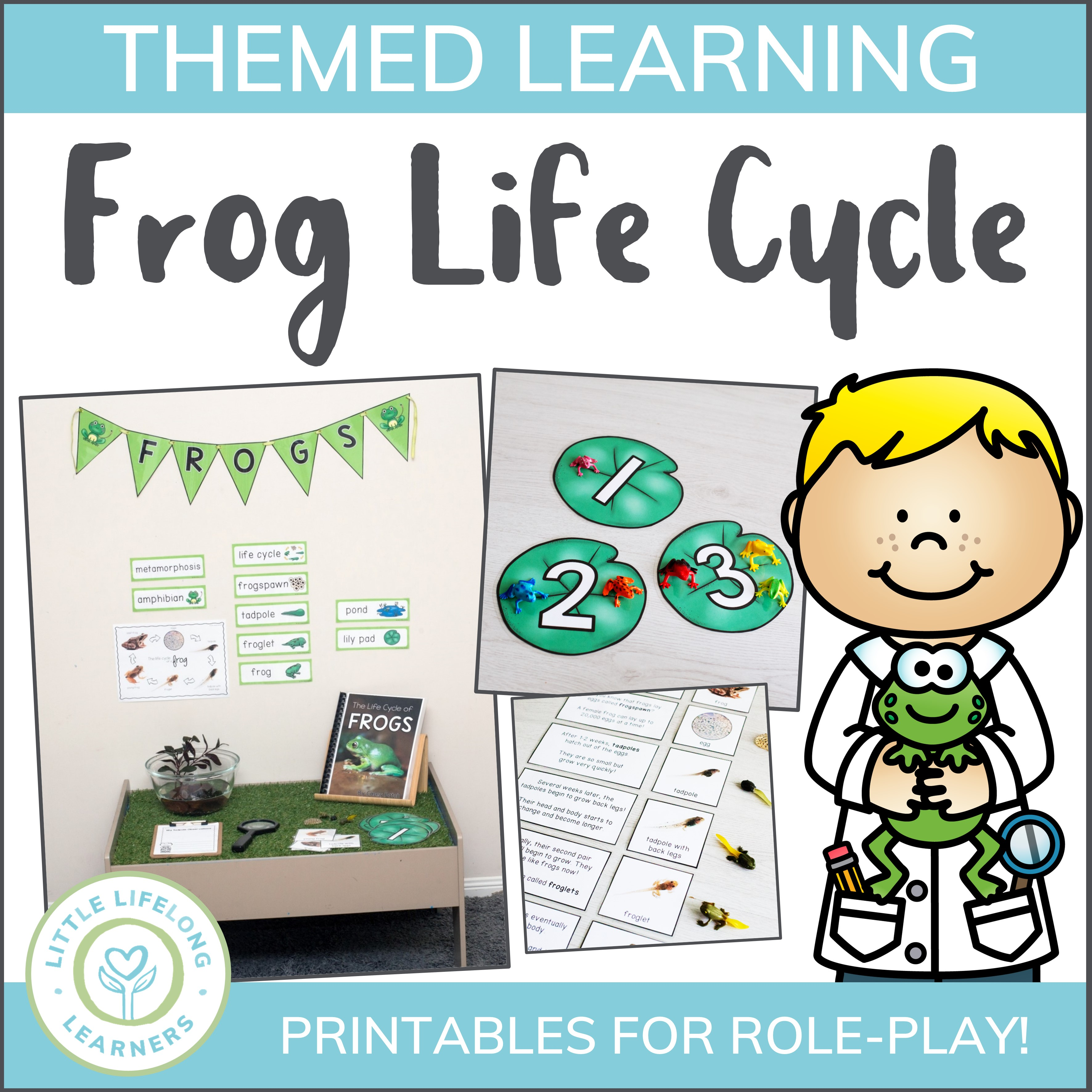 Frog Life Cycle Mini Unit