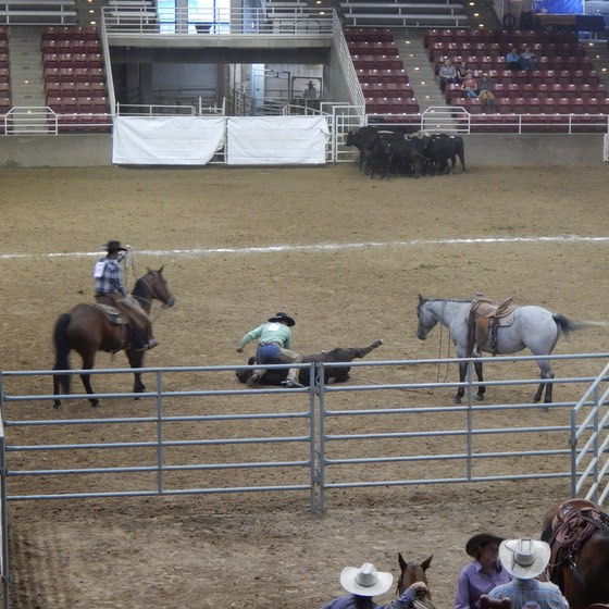 ranch-rodeo-5