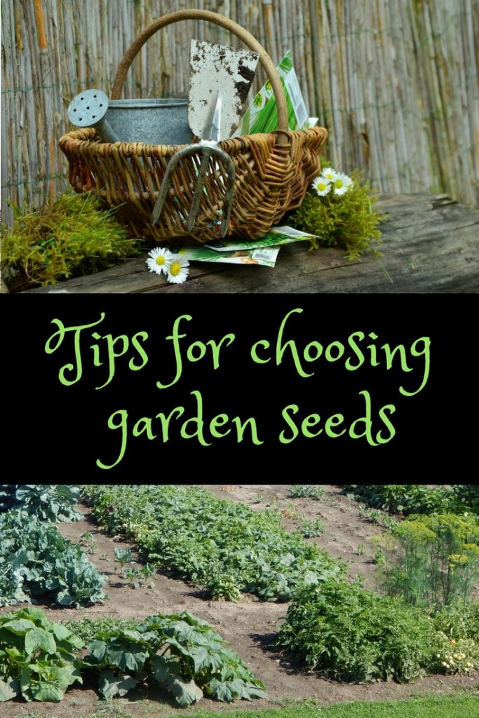 Tips for choosing garden seeds with a basket and tools and garden