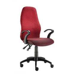 Flamingo Ergonomic Chair