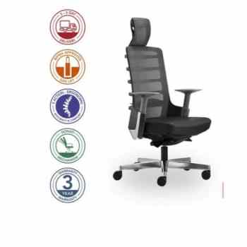 Spinelly Ergonomic high Back