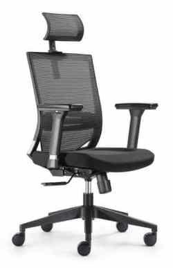 Move High Back Mesh Chair